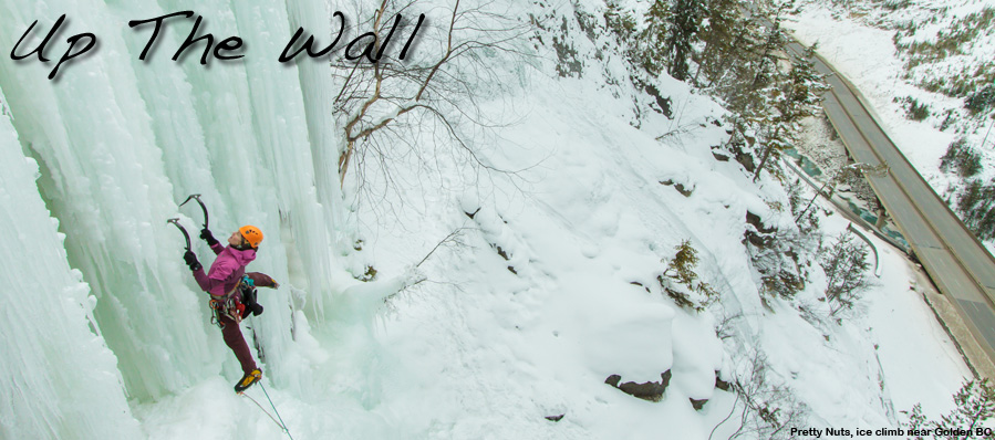 Ice Climbing Courses and Guided Ice Climbs in Canmore, Banff, the Canadian Rockies